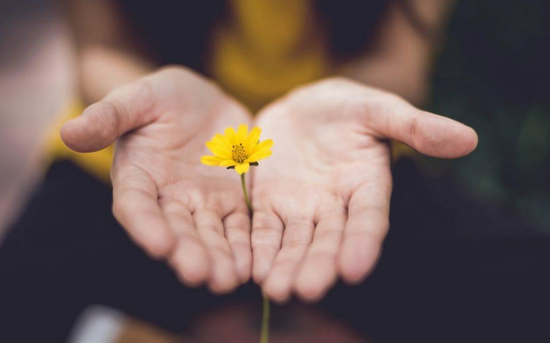 Episode 70: Self-Discipline Without Guilt